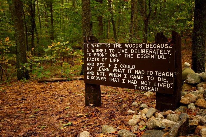 Thoreau1.x57454